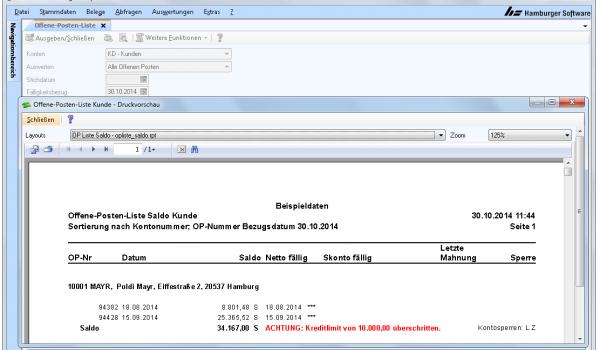 Rechnungserstellung Hamburger Software